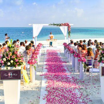Equipamentos e estruturas para uma festa de casamento